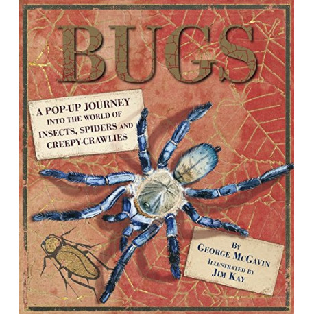 Bugs : A Pop-up Journey