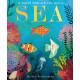 Sea: A World Beneath the Waves